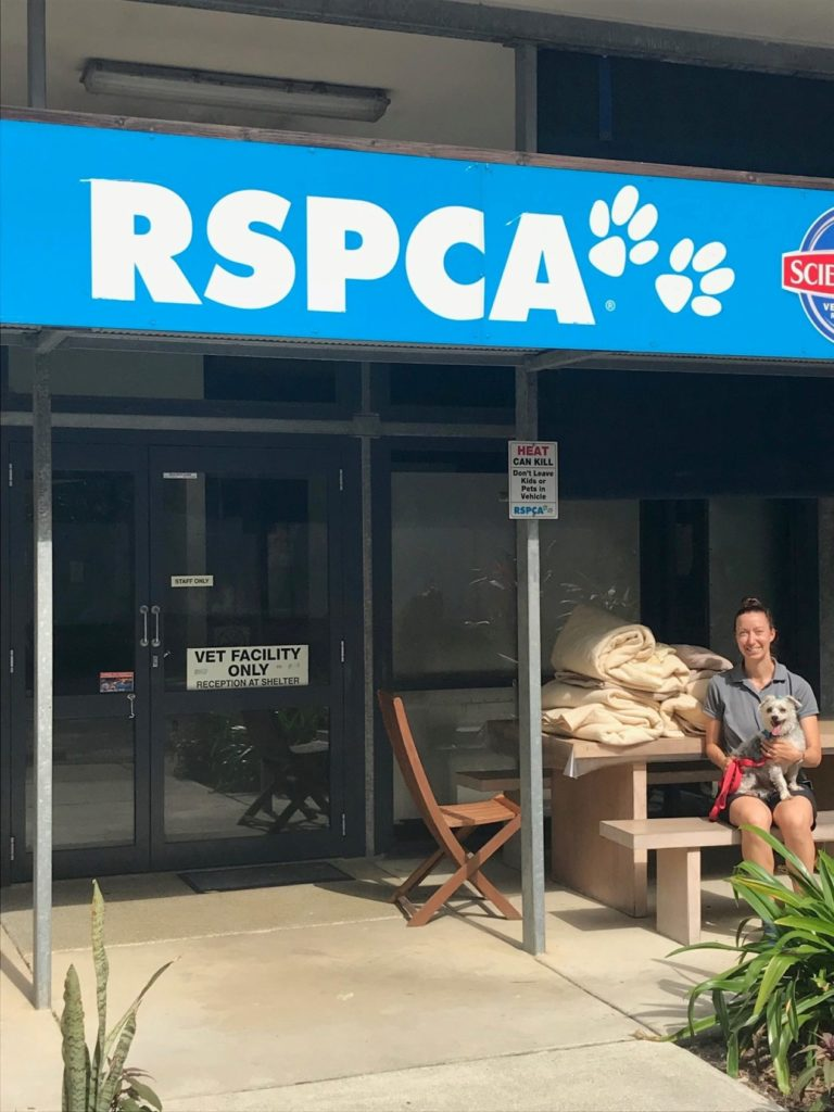 coco bay resort donates blankets to noosa RSPCA