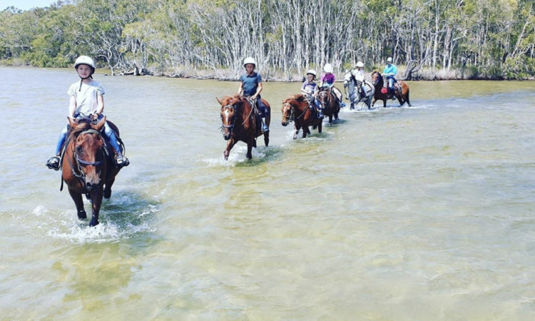 horse riding in noosa