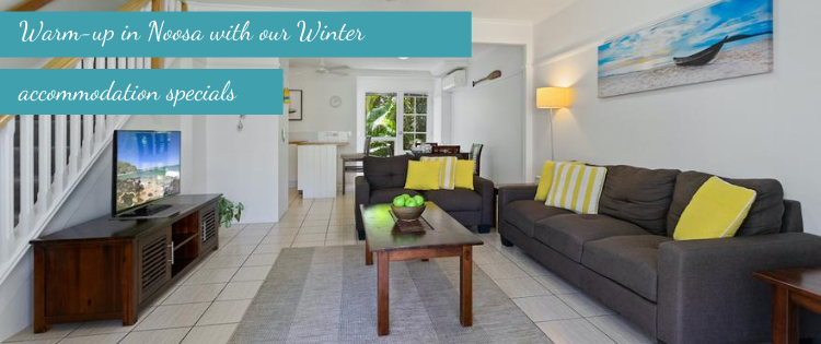 coco bay resort winter accommodation specials